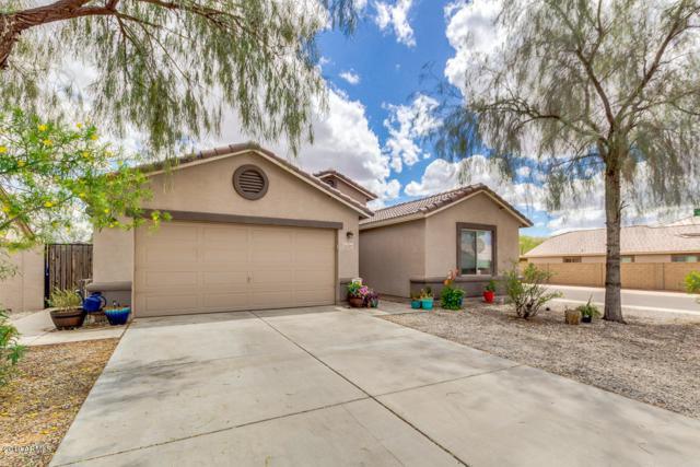 12509 W Winslow Avenue, Avondale, AZ 85323 (MLS #5930371) :: Home Solutions Team