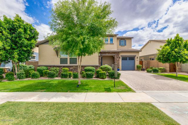 4043 E Comstock Drive, Gilbert, AZ 85296 (MLS #5930372) :: The Kenny Klaus Team