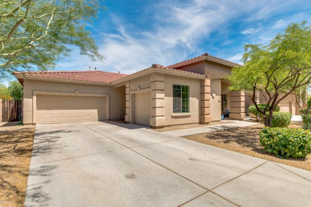 27211 N 23RD Lane, Phoenix, AZ 85085 (MLS #5930389) :: Occasio Realty