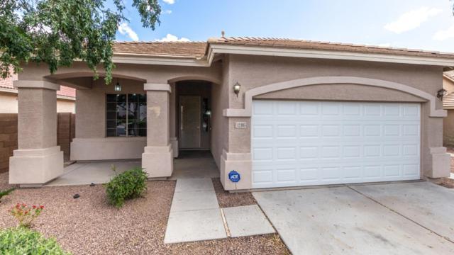 12405 W Yuma Street, Avondale, AZ 85323 (MLS #5930410) :: Home Solutions Team