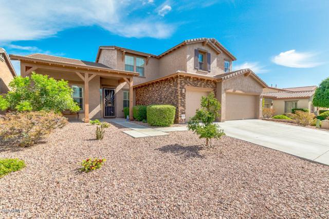 13408 W Chaparosa Way, Peoria, AZ 85383 (MLS #5930418) :: Team Wilson Real Estate