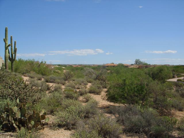 36448 N Wildflower Road, Carefree, AZ 85377 (MLS #5930420) :: The Wehner Group