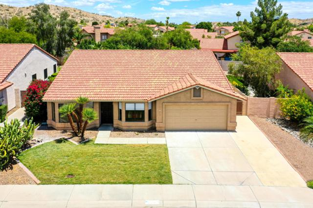14847 S 27TH Street, Phoenix, AZ 85048 (MLS #5930424) :: The Wehner Group