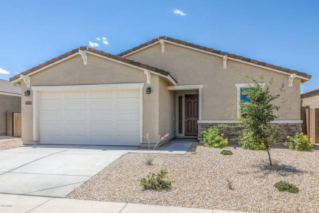 40109 W Brandt Drive, Maricopa, AZ 85138 (MLS #5930427) :: Team Wilson Real Estate