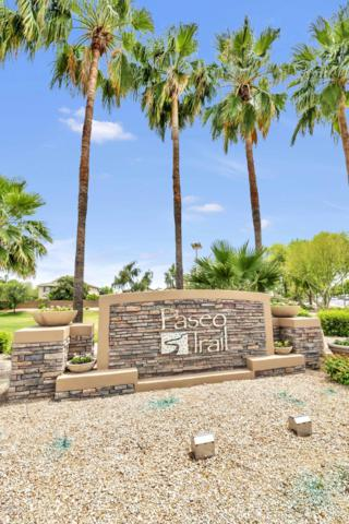 3229 E Goldfinch Way, Chandler, AZ 85286 (MLS #5930451) :: Riddle Realty