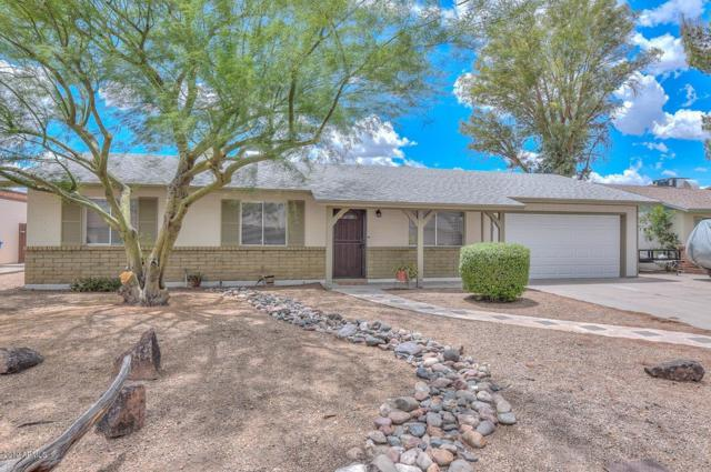 4151 W Poinsettia Drive, Phoenix, AZ 85029 (MLS #5930464) :: CC & Co. Real Estate Team