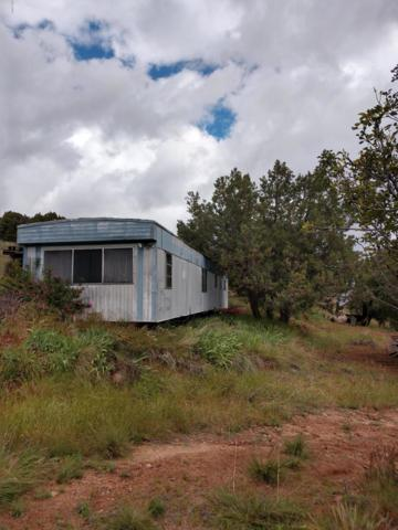50002 N 288 Highway, Young, AZ 85554 (MLS #5930480) :: Occasio Realty