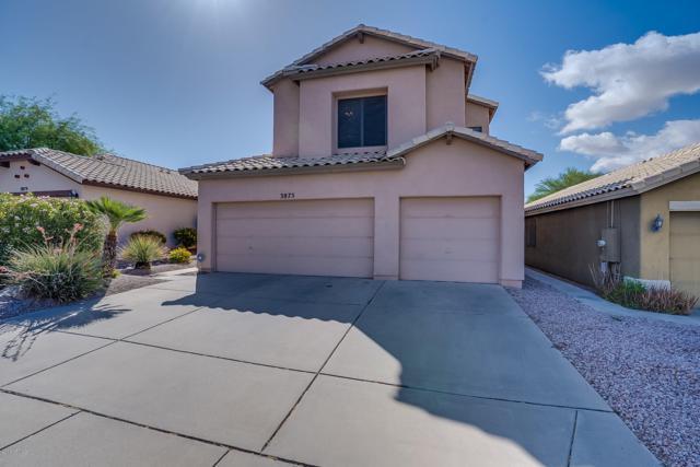 3875 E Mountain Sky Avenue, Phoenix, AZ 85044 (MLS #5930485) :: Yost Realty Group at RE/MAX Casa Grande