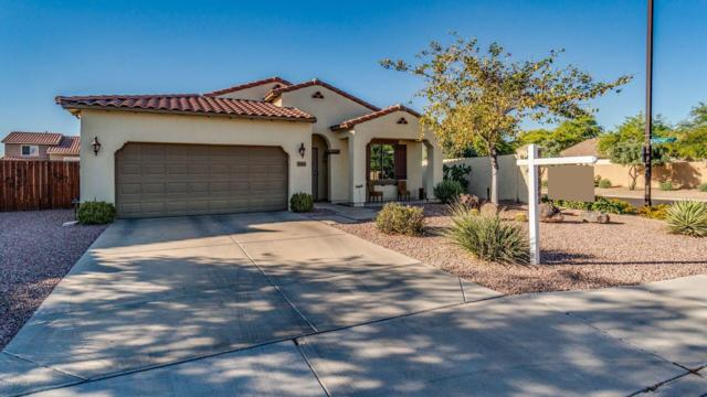 3664 E Andre Avenue, Gilbert, AZ 85298 (MLS #5930497) :: The Kenny Klaus Team
