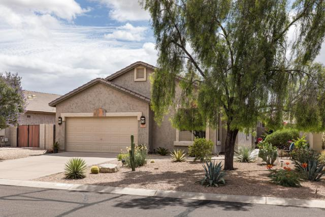 6523 E Hacienda La Noria Lane, Gold Canyon, AZ 85118 (MLS #5930507) :: CC & Co. Real Estate Team