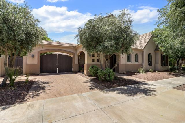 743 W Juniper Lane, Litchfield Park, AZ 85340 (MLS #5930508) :: The Luna Team