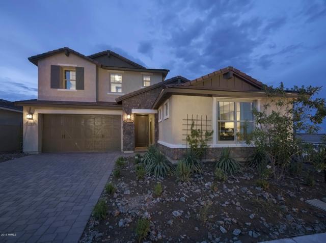 9717 E Telemetry Drive, Mesa, AZ 85212 (MLS #5930509) :: Team Wilson Real Estate