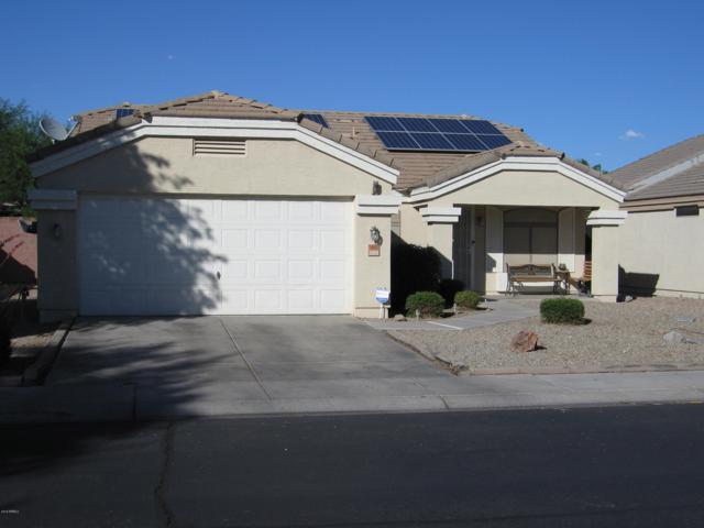 14605 N 126TH Avenue, El Mirage, AZ 85335 (MLS #5930522) :: Home Solutions Team