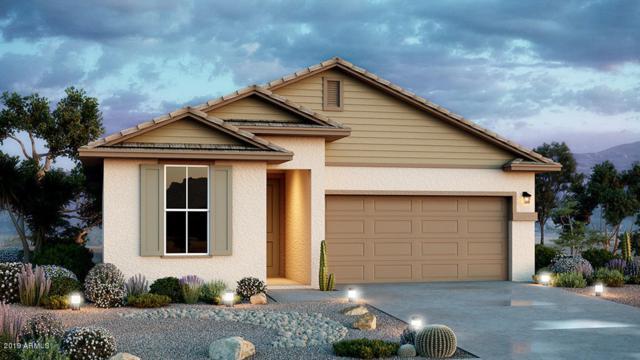23144 N 126th Lane, Sun City West, AZ 85375 (MLS #5930530) :: Team Wilson Real Estate
