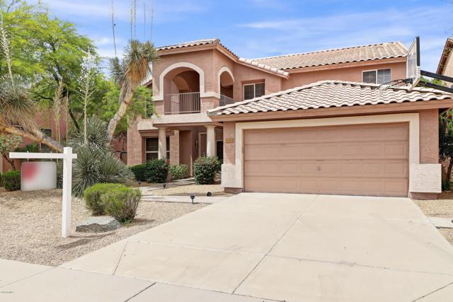 2342 W Binner Drive, Chandler, AZ 85224 (MLS #5930536) :: Lifestyle Partners Team