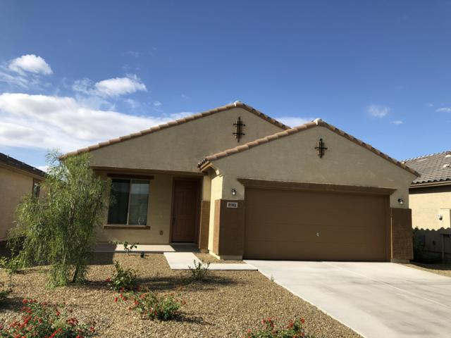 8981 W Townley Avenue, Peoria, AZ 85345 (MLS #5930543) :: Power Realty Group Model Home Center