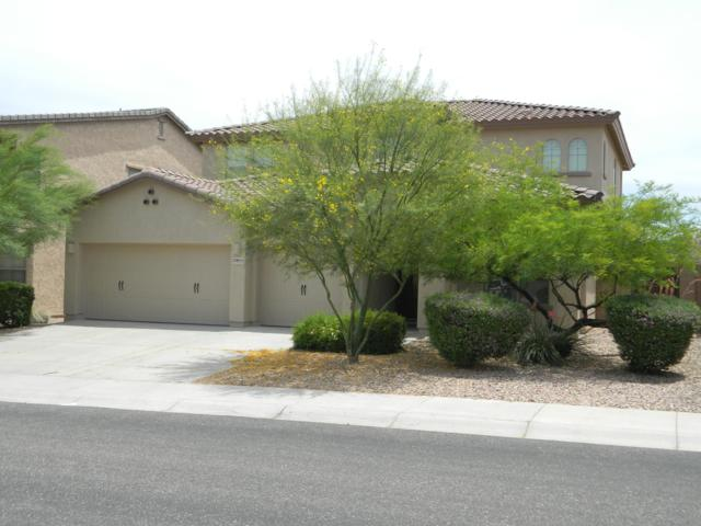 30855 N 126th Avenue, Peoria, AZ 85383 (MLS #5930560) :: The Garcia Group