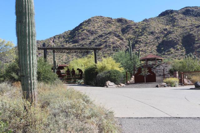 43220 N 78TH Street, Cave Creek, AZ 85331 (MLS #5930573) :: Riddle Realty