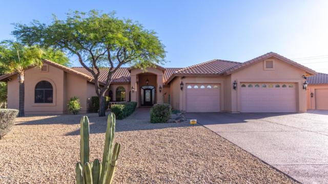 28602 N 57TH Street, Cave Creek, AZ 85331 (MLS #5930582) :: Team Wilson Real Estate