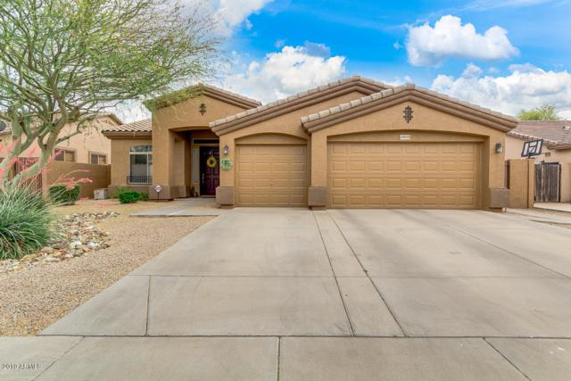 1895 E Locust Place, Chandler, AZ 85286 (MLS #5930584) :: CC & Co. Real Estate Team