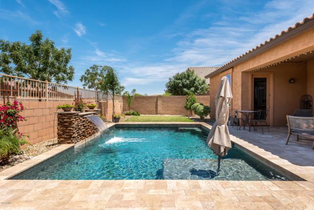 22314 E Via Del Verde, Queen Creek, AZ 85142 (MLS #5930586) :: Team Wilson Real Estate
