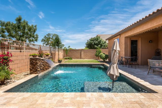22314 E Via Del Verde, Queen Creek, AZ 85142 (MLS #5930586) :: Santizo Realty Group
