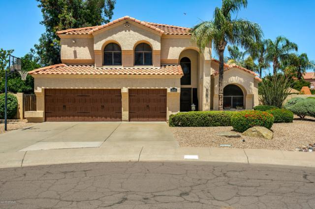 4608 E Marconi Avenue, Phoenix, AZ 85032 (MLS #5930597) :: Lucido Agency