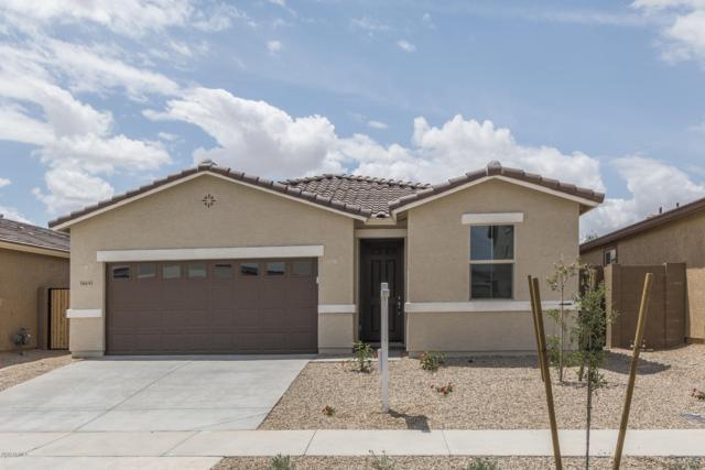 16641 W Mescal Street, Surprise, AZ 85388 (MLS #5930600) :: Occasio Realty