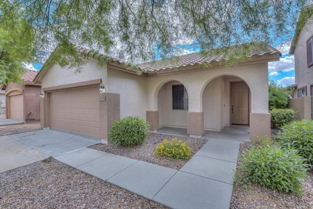 39726 N High Noon Way, Anthem, AZ 85086 (MLS #5930608) :: Riddle Realty