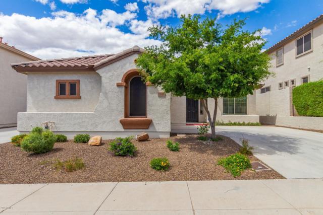 7346 W Milton Drive, Peoria, AZ 85383 (MLS #5930612) :: CC & Co. Real Estate Team
