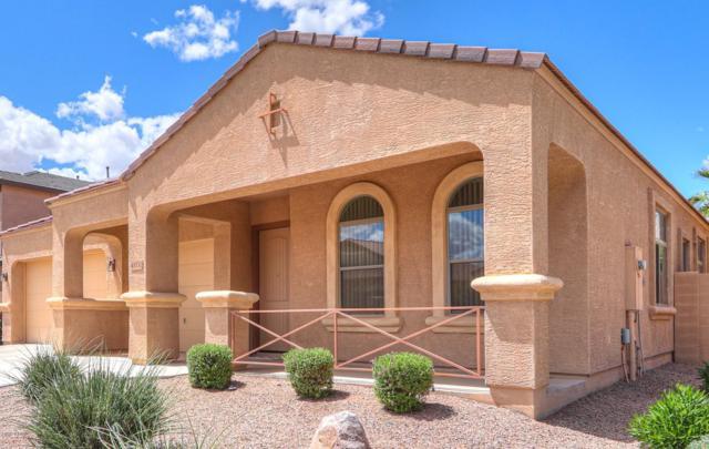 41132 W Novak Lane, Maricopa, AZ 85138 (MLS #5930615) :: Team Wilson Real Estate