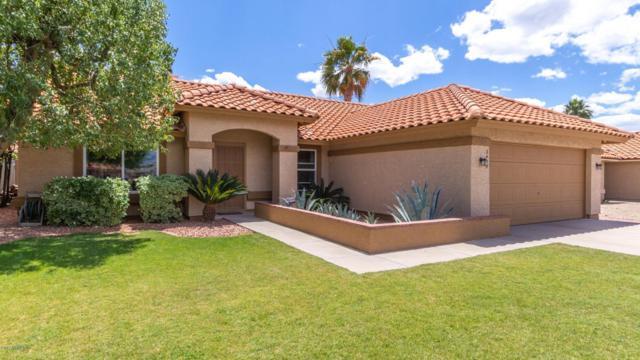 3449 E Tonto Lane, Phoenix, AZ 85050 (MLS #5930619) :: Team Wilson Real Estate