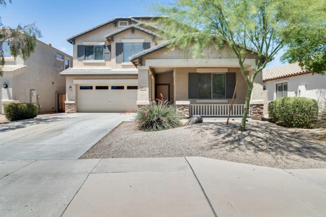 16164 W Shiloh Lane, Goodyear, AZ 85338 (MLS #5930628) :: Team Wilson Real Estate
