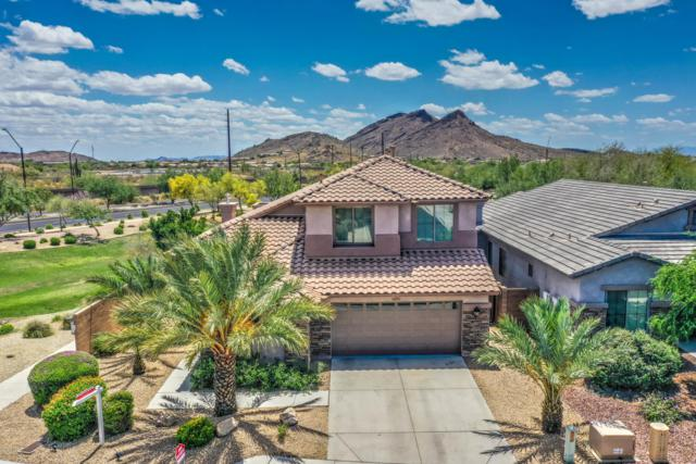 6419 W Silver Sage Lane, Phoenix, AZ 85083 (MLS #5930634) :: Team Wilson Real Estate