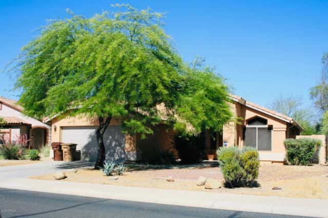 22039 N 107TH Drive, Sun City, AZ 85373 (MLS #5930644) :: Team Wilson Real Estate