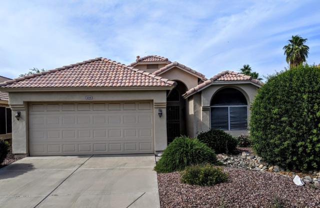 4210 E Rosemonte Drive, Phoenix, AZ 85050 (MLS #5930652) :: Team Wilson Real Estate