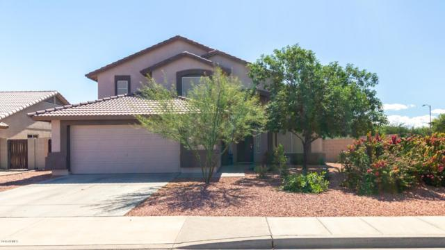 16125 N 163RD Drive, Surprise, AZ 85388 (MLS #5930654) :: CC & Co. Real Estate Team