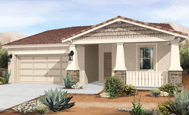 9760 E Torino Avenue, Mesa, AZ 85212 (MLS #5930658) :: Team Wilson Real Estate