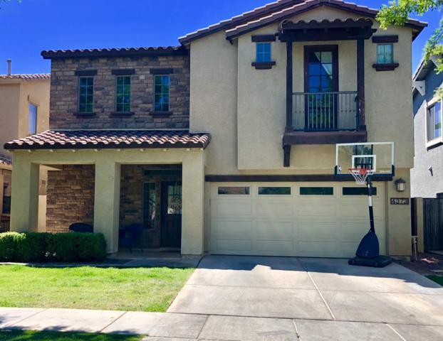 4373 E Page Avenue, Gilbert, AZ 85234 (MLS #5930668) :: Riddle Realty