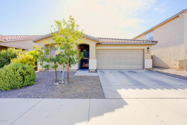 38195 N Reynosa Drive, San Tan Valley, AZ 85140 (MLS #5930669) :: The Laughton Team