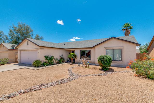 4552 N 86TH Drive, Phoenix, AZ 85037 (MLS #5930674) :: Team Wilson Real Estate