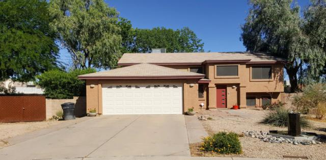 638 W Contessa Circle, Mesa, AZ 85201 (MLS #5930675) :: CC & Co. Real Estate Team