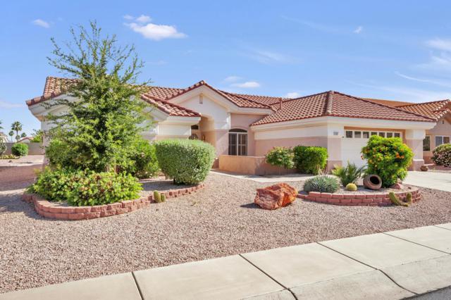 14305 W Parada Drive, Sun City West, AZ 85375 (MLS #5930681) :: Kepple Real Estate Group