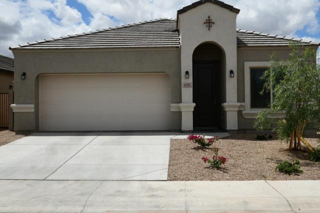 41285 W Jenna Lane, Maricopa, AZ 85138 (MLS #5930684) :: Team Wilson Real Estate