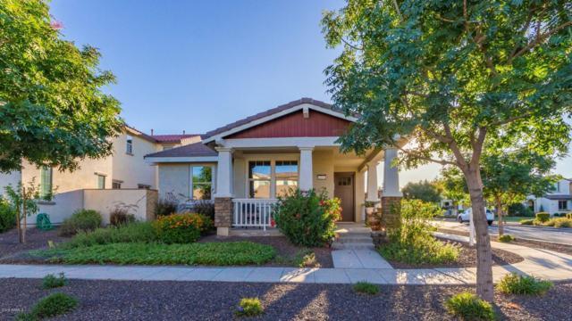 12532 N 153rd Drive, Surprise, AZ 85379 (MLS #5930700) :: Team Wilson Real Estate
