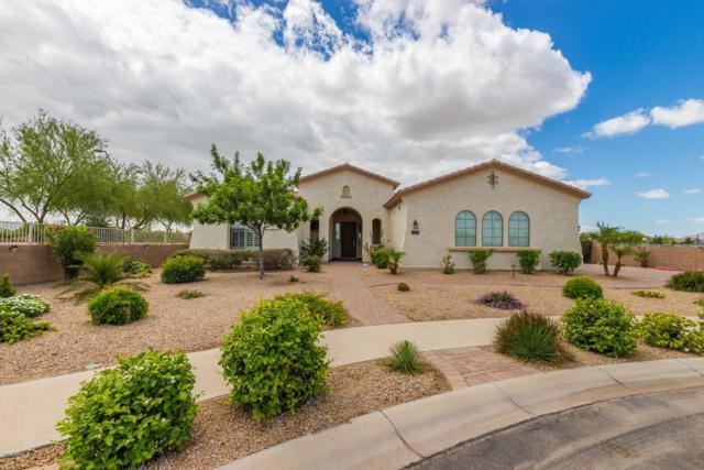 22393 E Munoz Court, Queen Creek, AZ 85142 (MLS #5930721) :: Santizo Realty Group