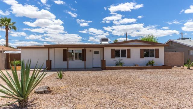 2035 W Georgia Avenue, Phoenix, AZ 85015 (MLS #5930733) :: Team Wilson Real Estate