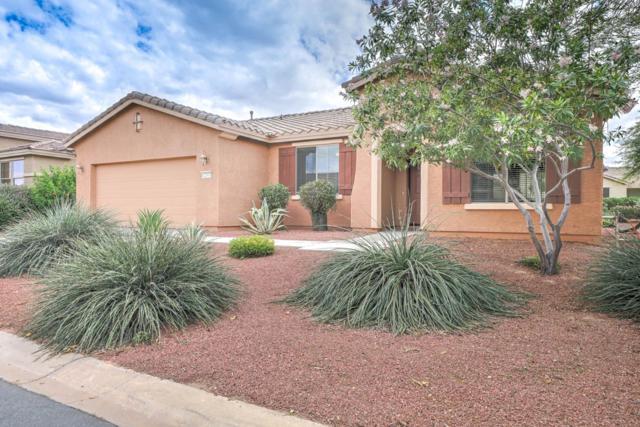 42393 W North Star Drive, Maricopa, AZ 85138 (MLS #5930741) :: Team Wilson Real Estate