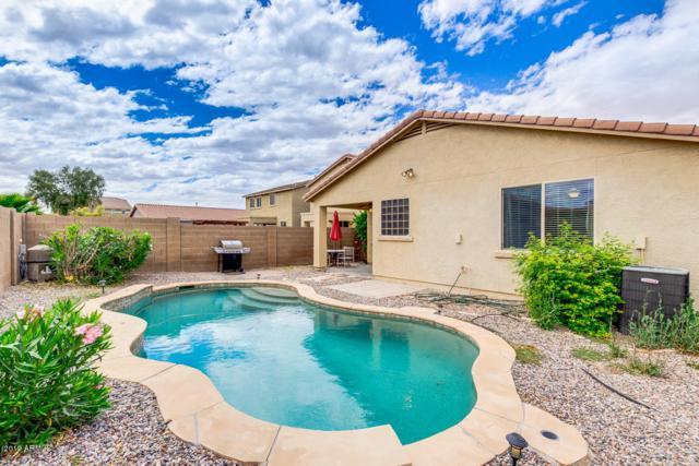 42561 W Palmyra Lane, Maricopa, AZ 85138 (MLS #5930746) :: Team Wilson Real Estate