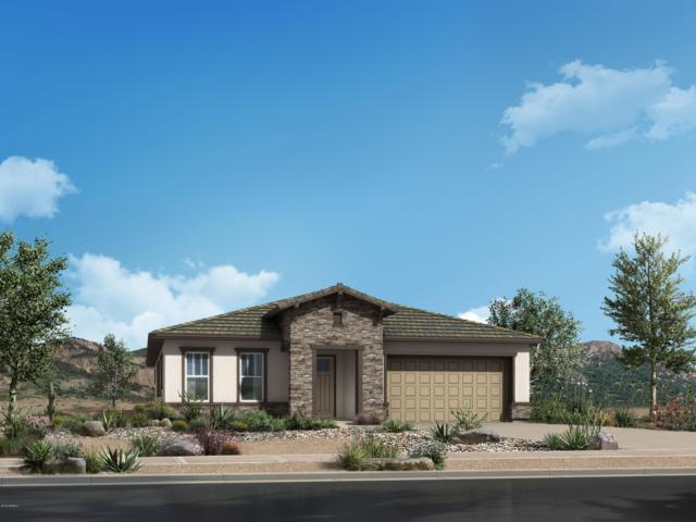 18130 W Hope Drive, Goodyear, AZ 85338 (MLS #5930749) :: Home Solutions Team